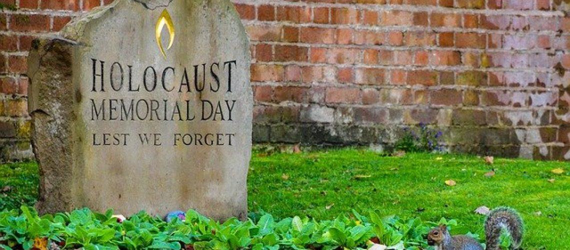 אלעד שושן קלושינר - הכירו את זכויות ניצולי השואה (pixabay)